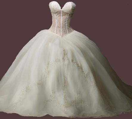 La plus belle robe de mariee au monde